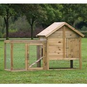 Affordable Coops For Your Chickens